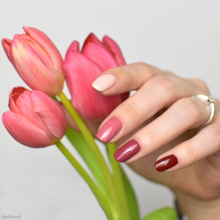 Ombre Nails aus cozy cozy, dare dusty rose, chubby chestnut und daily dark red.
